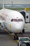 O Nyala de montanha Boeing 787 Dreamliner de Ethiopian Airlines (E) imagem de stock royalty free