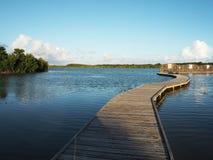 O obervatório da lagoa salina em Martinica fotos de stock royalty free