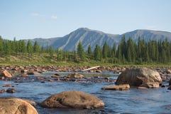 O obstáculo em um rio da montanha chamou o ` do jardim de rocha do ` Imagem de Stock