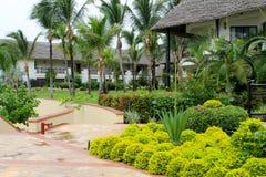 O Oceano Índico jardina Zanzibar, Tanzânia, África imagens de stock
