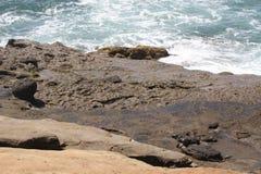 O oceano encontra os penhascos na praia do oceano Imagem de Stock Royalty Free