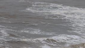 O Oceano Pacífico video estoque