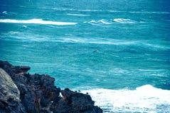 O oceano poderoso Fotografia de Stock