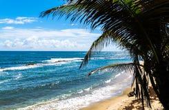 O oceano tem meu coração fotografia de stock royalty free