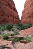 O Olgas - a Kata Tjuta - montagem Olga [estrada do rio do estivador, parque nacional de Uluru-Kata Tjuta, Território do Norte, Aus Imagem de Stock Royalty Free