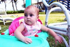 O olhar! Imagem de Stock Royalty Free