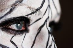 O olhar Fotografia de Stock