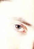 O olhar fixo fotografia de stock