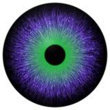 O olho verde roxo louco 3d isolou o fundo branco ilustração do vetor
