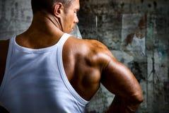 O ombro de um homem muscular novo bonito foto de stock