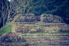 O orgulho de Belize Foto de Stock Royalty Free