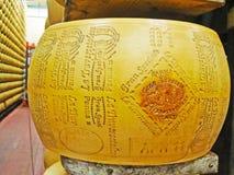 O orgulhoso de Parma Fotos de Stock Royalty Free