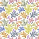 O ornamento floral bonito, Vector o teste padrão sem emenda Foto de Stock