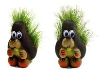 O ouriço e a grama Foto de Stock