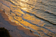 O ouro acena no litoral Foto de Stock