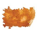 O ouro do curso da escova da aquarela isolou o elemento branco do vetor do fundo para o projeto Imagem de Stock