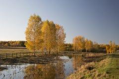 O outono é diferente Fotografia de Stock Royalty Free