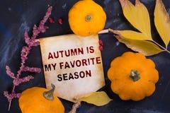 O outono é minha estação favorita fotos de stock