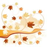 O outono abstrato caído deixa o fundo Fotos de Stock Royalty Free