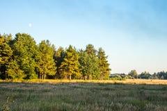 O outono Campo e floresta na luz do por do sol do Sun Imagem de Stock Royalty Free