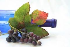 O outono coloriu as folhas da uva Fotos de Stock Royalty Free