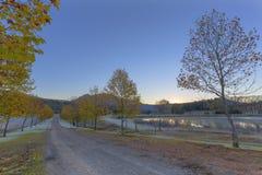 O outono coloriu as folhas na luz do amanhecer Imagem de Stock Royalty Free