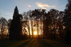 O outono em nosso parque local olha agradável Fotos de Stock Royalty Free