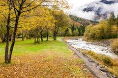 O outono em uma cama das folhas secas que olham a montanha ajardina Fotos de Stock