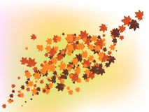 O outono, folhas de outono voa belamente ilustração royalty free
