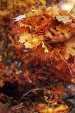 O outono folheia as mãos do homem imagem de stock royalty free