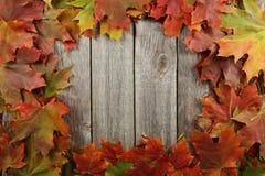 O outono folheia quadro no fundo de madeira cinzento foto de stock