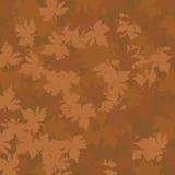 O outono folheia teste padrão Imagem de Stock