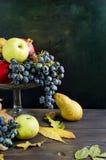 O outono fresco frutifica - romã, peras, uvas e maçãs Fotos de Stock
