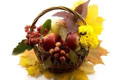 O outono frutifica com folhas amarelas em uma cesta Imagens de Stock