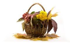 O outono frutifica com folhas amarelas em uma cesta Fotos de Stock Royalty Free