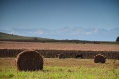 O outono nas montanhas é uma grande época em que for ainda morno e bonito Imagens de Stock