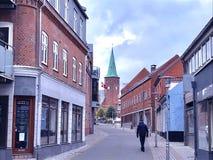 O outono raspa dentro, Dinamarca Imagem de Stock Royalty Free