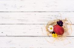 O ovo da páscoa no ninho da palha com mola floresce na tabela de madeira branca, vista superior com espaço da cópia Imagens de Stock
