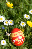 O ovo da páscoa vermelho que encontra-se no springflower cobriu o prado Fotos de Stock Royalty Free