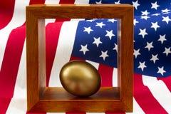 O ovo do ouro no quadro de madeira com bandeira dos Estados Unidos embandeira o rippl do teste padrão Foto de Stock Royalty Free