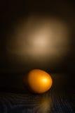 O ovo dourado Imagem de Stock Royalty Free