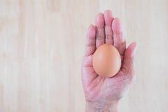 O ovo e o coelho da galinha na cesta Tempo da Páscoa, tempo feliz Elevação de Jesus outra vez imagem de stock