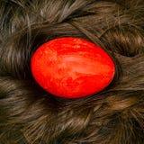 O ovo vermelho encontra-se no cabelo da menina Ninho do cabelo Ovo pintado brilhante Feriado de Easter fotografia de stock