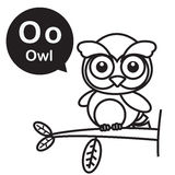 O Owl cartoon and alphabet for children to learning and coloring Royalty Free Stock Images