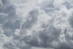 O pássaro está voando altamente no céu fotografia de stock