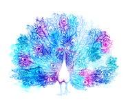 O pássaro Handdrawn bonito do pavão consiste muitos detalhes ilustração royalty free