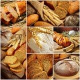 O pão imagens de stock