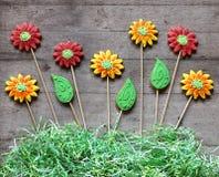 O pão-de-espécie floresce com grama de papel no fundo de madeira rústico Imagens de Stock Royalty Free