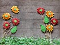 O pão-de-espécie floresce com grama de papel no fundo de madeira rústico Fotografia de Stock