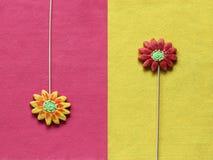 O pão-de-espécie floresce no amarelo e o rosa sentiu o fundo Imagens de Stock Royalty Free